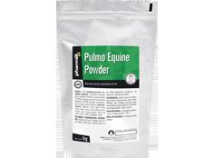 Pulmo Equine Powder